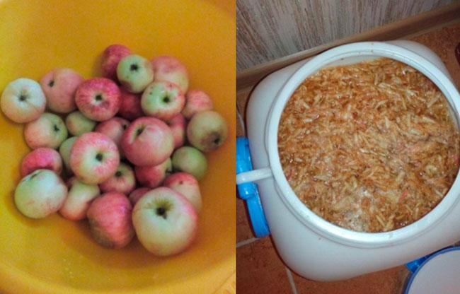 Простой рецепт браги из яблок